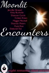Moonlit Encounters
